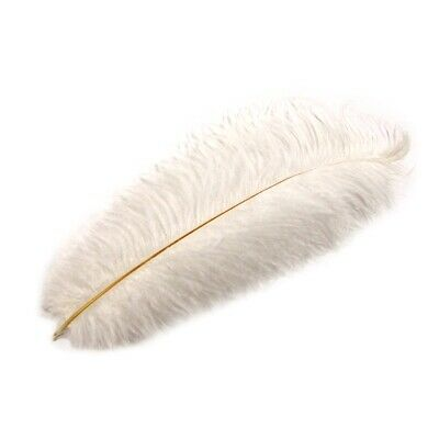$11.48 • Buy White Ostrich Plume Feather Pirate/Steampunk/Fancy Victorian Hat Feathers Plumes