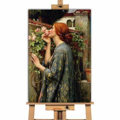 £11.04 • Buy John William Waterhouse The Soul Of The Rose Canvas Wall Art Picture Print