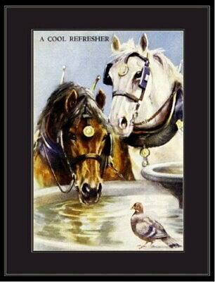 95035 English Picture Shire C Horse Pigeon Bird Decor LAMINATED POSTER CA • 26.10£