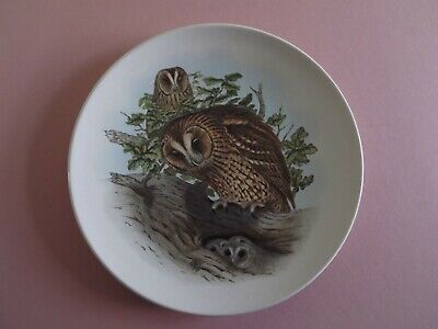 Poole Pottery Tawny Owl Collector Plate • 6£