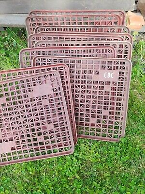 $40 • Buy Brown Plastic Pallets, Used, Lot Of 10 LOCAL PICKUP ONLY ZIP CODE 20175