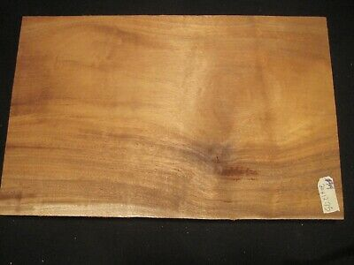 $79.99 • Buy Guitar Body Blank, ONE PIECE OF SOLID MAHOGANY!!!   #314