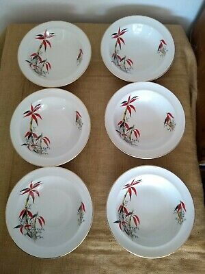 """Vintage Retro Barratts """"Delphatic China"""" Red Bamboo 6 Soup Bowls Dishes #B755897 • 18£"""