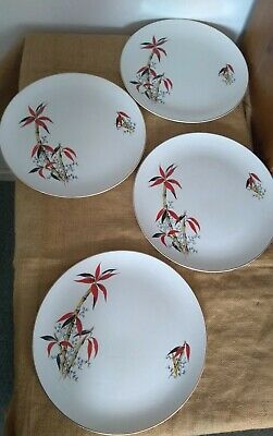 """Vintage Retro Barratts """"Delphatic China"""" Red Bamboo 4 Dinner Plates #B755897 • 12£"""