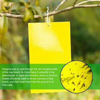 AU25.99 • Buy 50Pc Yellow Sticky Insect Killer Whitefly Thrip Fruit Fly Gnat Leafminer Trap