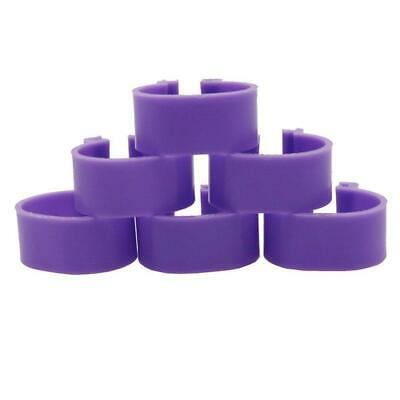 Pack Of 10 X 16mm Chicken Poultry Flat Leg Rings In PURPLE - Free Postage • 3.35£