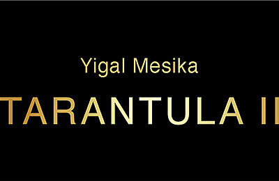 Tarantula II (Online Instructions And Gimmick) By Yigal Mesika  • 56.41£