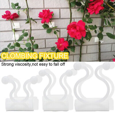 £2.93 • Buy Invisible Plant Climbing Clips Wall Vines Fixture Wall Sticky Hook Magic Holder~