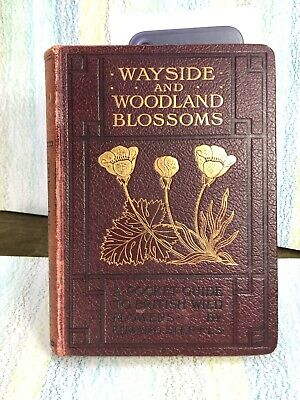 Wayside And Woodland Blossoms Edward Step Series I Pocket Guide Wild Flowers • 24.75£
