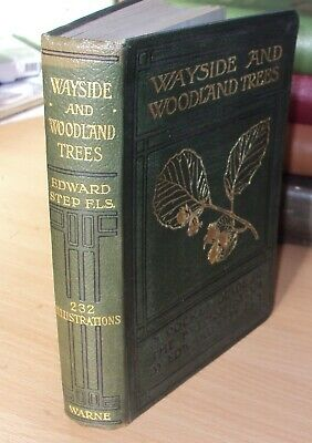 WAYSIDE & WOODLAND TREES By EDWARD STEP, Illustrated - Ca 1905 • 6.99£