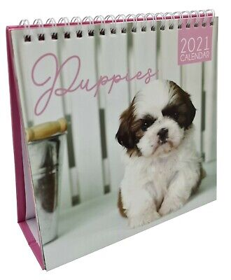 2021 Month To View Desk Calendar Home Office Table Work Top Planner PUPPIES • 3.99£