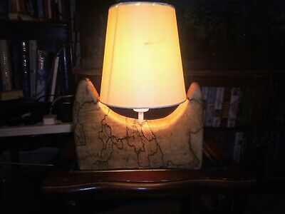 Driftwood Table Lamp • 20£