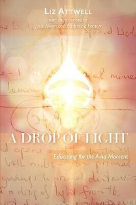 £13.89 • Buy A Drop Of Light Educating For The A-ha Moment By LIZ ATTWELL 9781855845756