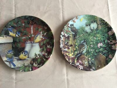 Coalport 'Garden Visitors' Collection Plates. X 2 • 4.50£