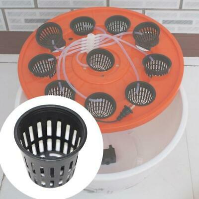 $ CDN3.47 • Buy 10pcs Heavy Duty Mesh Pot Net Cup Basket Hydroponic Plant Grow Y4G7 Clone O3I2