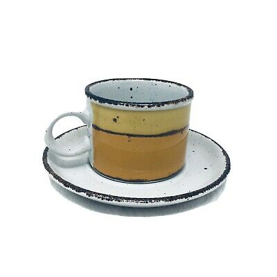 £4.56 • Buy Vintage Stonehenge Midwinter Sun 1 Cup And Saucer Mid Century Ex Cond