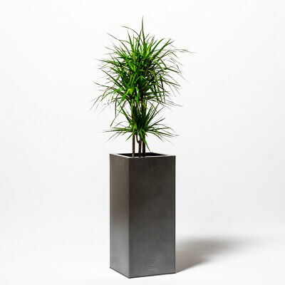 75/100cm Tall Cube Zinc Silver & Black/White Gloss Dipped Galvanised Planter • 100.99£