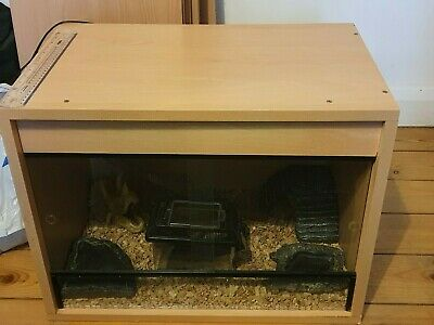 £70 • Buy Starter Reptile 2ft Vivarium Kit Incl All Accessories - Wooden With Glass Doors