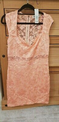 £15 • Buy Lace Peach Coral River Island Dress Lace Body Con SIZE 14 RRP£32 New With Tags