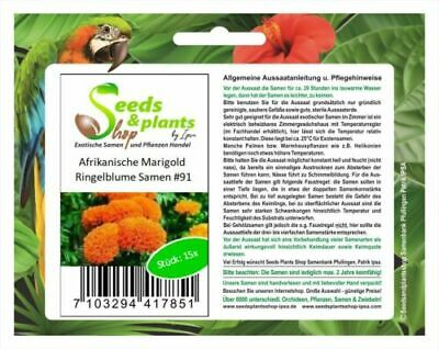 15x African Marigold Plants - Seeds #91 • 3.15£