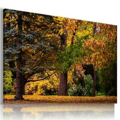 TREES PARK LEAFS AUTUMN Perfect View Canvas Wall Art Picture L549 UNFRAMED • 11.99£