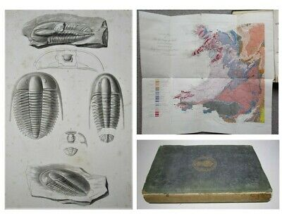 £85 • Buy 1866 1st GEOLOGY Of NORTH WALES Fossils TRILOBITES Geological Map & Plates