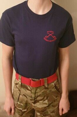 Physical Training Instructor Army Embroidered With Red Crossed Swords  • 9£