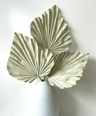 AU7.95 • Buy Dried Flowers Artificial Palm Fan Spear Stem Preserved Look Palms Leaf Natural