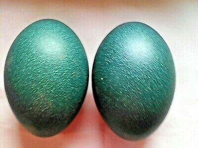 £35 • Buy 2 Huge Blown Emu Egg To Decorate ~ Carve ~ Taxidermy