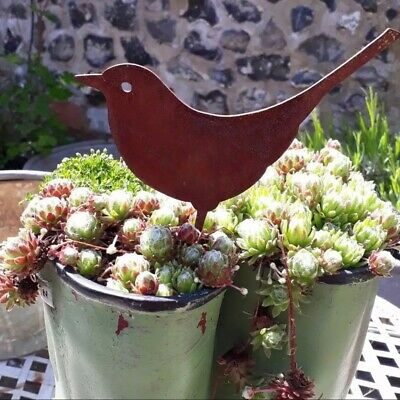 £6.80 • Buy Rusted Metal Bird Garden Fence Topper Decoration Patio Sculpture Ornament Animal