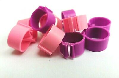 £3.80 • Buy Pack Of 10 X 16mm Chicken Poultry Flat Leg Rings In Pink And Purple - Free Post