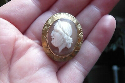 Victorian Carved Zeus Shell Cameo And Gold Gilt Metal Brooch • 11.50£