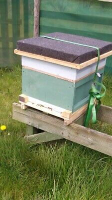 £950 • Buy 2x National Beehive Complete With Bees