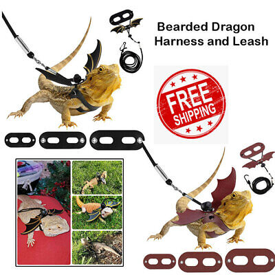 £6.69 • Buy Nuoshen 5 Pack Bearded Dragon Harness And Leash AdjustableS,M,L Soft Leather For