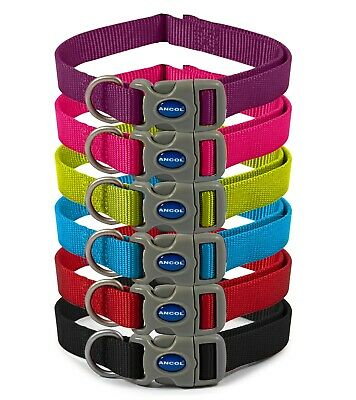 £4.80 • Buy Ancol Viva Nylon Adjustable Quick Fit Buckle Dog/puppy Collar - 6 Colours