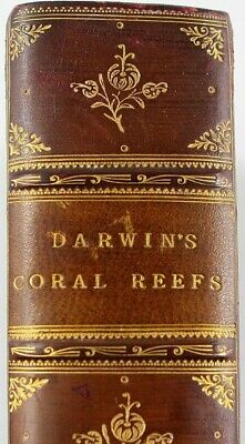 £99 • Buy Charles Darwin - Coral Reefs - Prize Binding 1890 - Clean And Beautiful Example