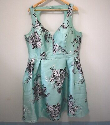 AU35 • Buy City Chic Green Floral Fit & Flare Dress Size L