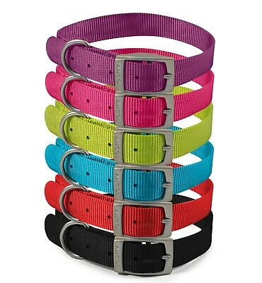 £3.89 • Buy Ancol Viva Nylon Puppy Dog Pet Strong Collars In 6 Colours And 5 Sizes