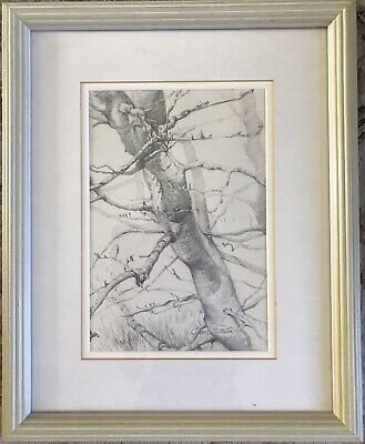 """£15 • Buy Superb Drawing By Clare Hornsey """"Overgrown Beech Hedge"""""""
