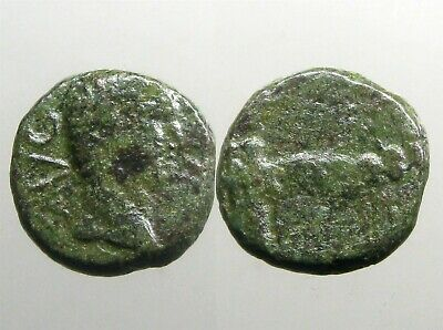 $0.99 • Buy EMPEROR TIBERIUS AE17_____Philippi Macedonia_____TWO PRIESTS PLOWING WITH OXEN