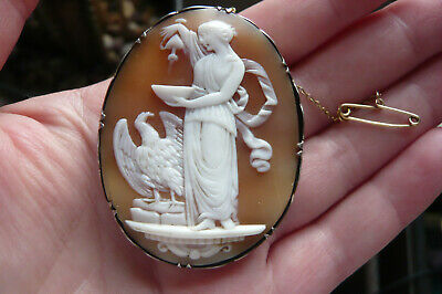 £1.24 • Buy Victorian Carved Hebe The Goddess Of Youth Shell Cameo And Silver Brooch