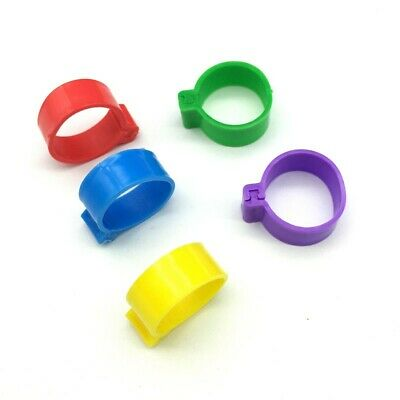 £4.29 • Buy Pack Of 10 X 16mm Chicken Poultry Flat Leg Rings In 5 Mixed Colours - Free Post