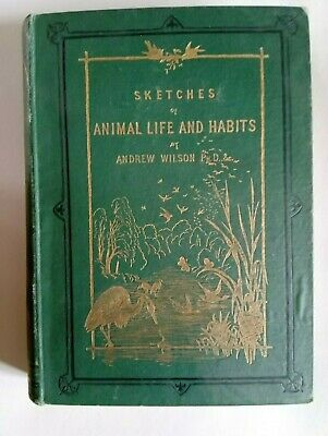 £9.50 • Buy Sketches Of Animal Life And Habits Andrew Wilson Rare Antique Vintage Book 1877