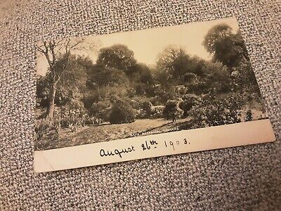 £1 • Buy Old Frith Postcard Of Botanical Gardens Bath, Somerset Posted 1903