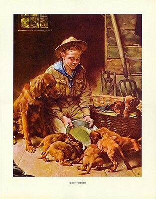 $ CDN33.32 • Buy Norman Rockwell BSA Boy Scout Print GOOD FRIENDS 1927