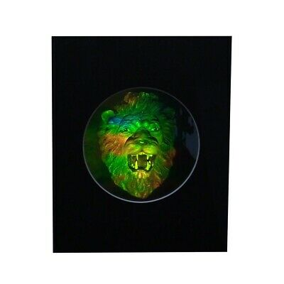 £21.59 • Buy LION HEAD Matted Hologram Picture, 3D Embossed Type