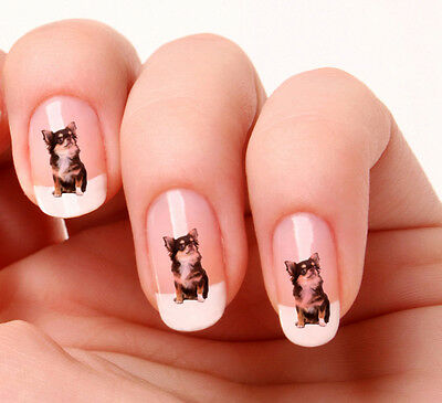 £1.99 • Buy 20 Nail Art Stickers Transfers Decals #319 - Chihuahua Just Peel & Stick