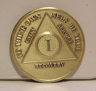 $7.20 • Buy Alcoholic 1 Year Recovery 1 Yr Chip Medallion Coin Medal Token  AA Anonymous