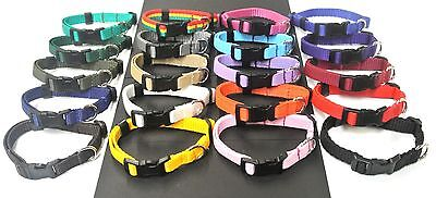 £5.25 • Buy Dog Collar 10  - 15  Small Puppy Adjustable 13mm Strong Webbing Various Colours