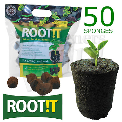 £12.99 • Buy ROOTING SPONGE ROOTIT BAG Of 50 Propagation Plug Cube Cutting Seed Hydroponic